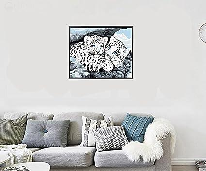 Catand Horse 40*50 cm Fuumuui DIY Malen nach Zahlen-/Ölgem/älde Geschenk f/ür Erwachsene Kinder Malen Nach Zahlen Kits Mit Holzrahmen Home Haus Dekor