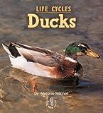 Ducks, Melanie S. Mitchell, 0822546027