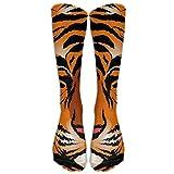 Striped Bengal Tiger Athletic Long Dress Socks High Fun Sock