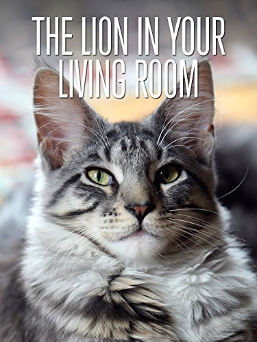 The Lion In Your Living Room