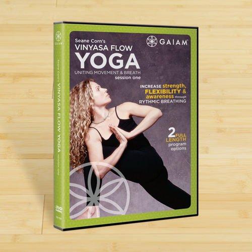 Vinyasa Flow Yoga Session I DVD with Seane Corn