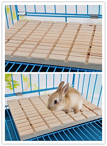 Rabbit Foot Pad Toy Small Animals Bunny Chinchilla Guinea Pig Rabbit Totoro Hedgehog Hamster Scratching Pads Antiskid Edible Natural Wood Board by Hypeety (Image #6)