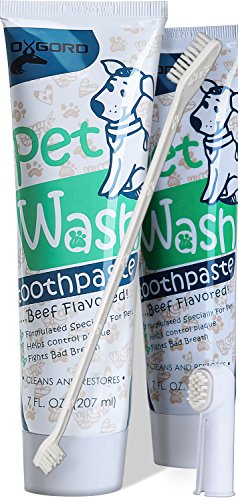 Paws & Pals 14 oz. Pet Dog Enzymatic Toothpaste Dental Care Kit with Dual Toothbrush for Oral Hygiene - Fights Plaque Freshens Breath - Cleans and Restores - Pack of 2 - Beef Flavor