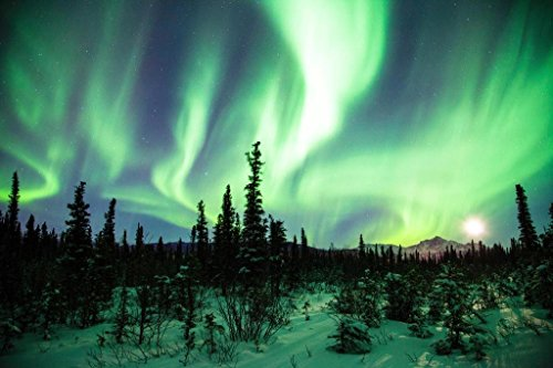 northern lights aurora borealis alaska