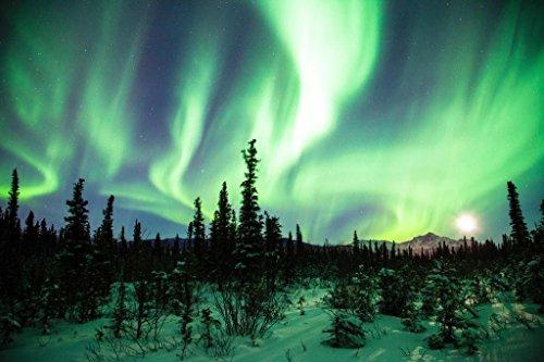 Northern Lights or Aurora Borealis Alaska Photo Art Print Po