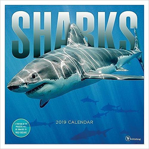 Sharks 2019 Calendar por Tf Publishing epub
