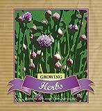 Growing Herbs: Growing, Harvesting and Using Herbs