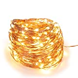 Magicnight Halloween Warm White 10ft 30 Mini Micro LED Copper Starry Fairy Strings Lights AA Battery Powered Operated Set of 1