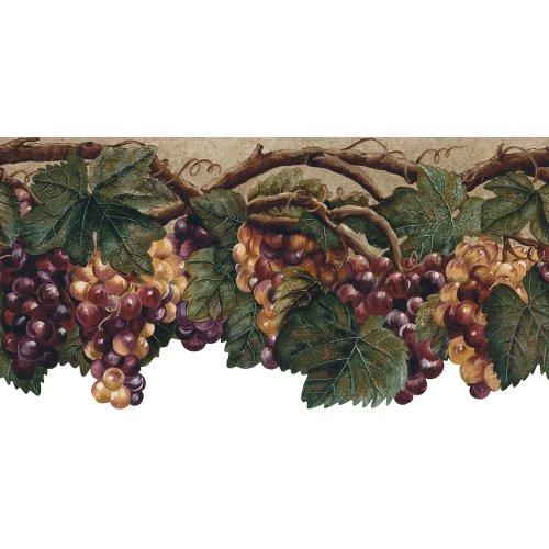 wine and grape border - 5