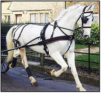 ZILCO Isoliert Combo Pferd Pony Satteltasche