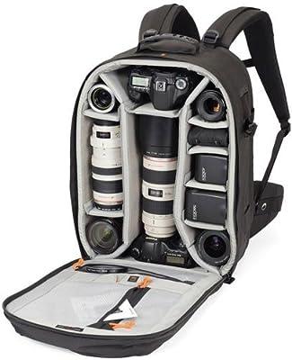 Lowepro Pro Runner 450 AW - Mochila con compartimientos para ...