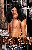 Dark Reign (Box Set)