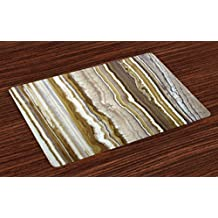 Marble Place Mats Set of 4 by Ambesonne, Onyx Marble Rock Themed Vertical Lines and Blurry Stripes in Earth Color Print, Washable Placemats for Dining Room Kitchen Table Decoration, Mustard Brown