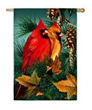 Cheap Evergreen Autumn Splendor Cardinals Standard Flag 29″ X 43″