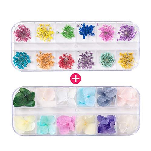 2 Boxes 24 Colors 48pcs Nail Dried Flowers 3d Dry Flowers for Nail Art, Colorful Real Natural Flowers for Nail Art Flowers, 3D Nail Flowers Nail Art Stickers for Tips Manicure Decor Nail Art Supplies