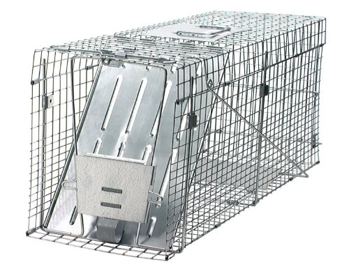 Havahart Collapsible Large Animal Cage product image
