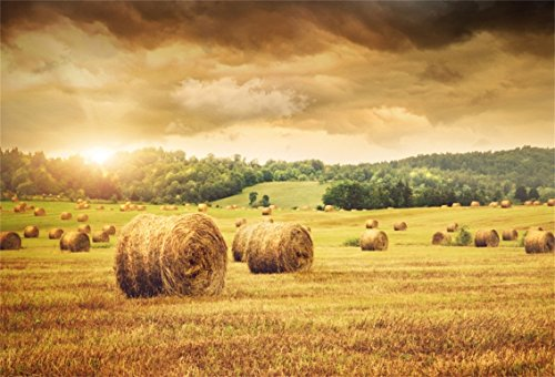 CSFOTO 7x5ft Background Field Freshly Bales Hay Beautiful Sunset Photography Backdrop Autumn Agriculture Straw Country Harvest Hayrick Farmland Photo Studio Props - Country Wedding Accessories