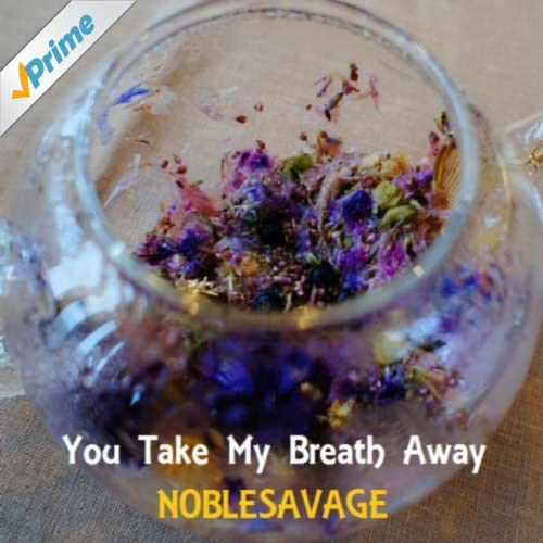 Amazon.com: You Take My Breath Away: Noblesavage: MP3 ...