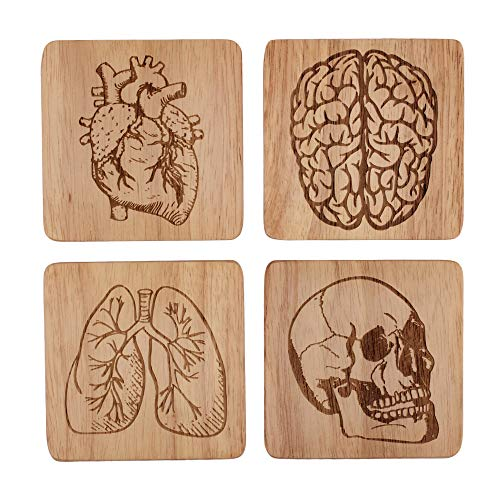 Oak Coaster - Oak Wooden Human Anatomy Coasters, Medical Coasters, Outdoor Coasters, Funny Coasters for Men, Beer Coasters, Bar Coasters Funny Housewarming Gifts for Men