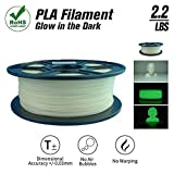 SunTop Glow in the Dark PLA Filament 1.75mm 3d printing Filament, 1 kg Spool, Dimensional Accuracy +/- 0.03 mm