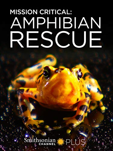 (Mission Critical: Amphibian Rescue )