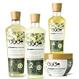 CoCo Conscious Collective Straight Transformations Bundle, 97-100% Natural Hair Products, Holistic Thermal Protection Sulfate and Paraben Free Hair Care System, (4) 6 to 12 ounce Full Size Products Review