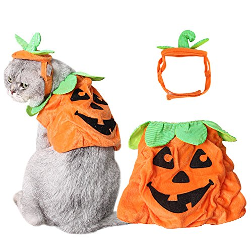 [Bascolor Halloween Pet Costume Pumpkin Suits Clothes Hats Dress Headbands for Dogs Cats Christmas Festival Costumes] (Cat In Pumpkin Costume)