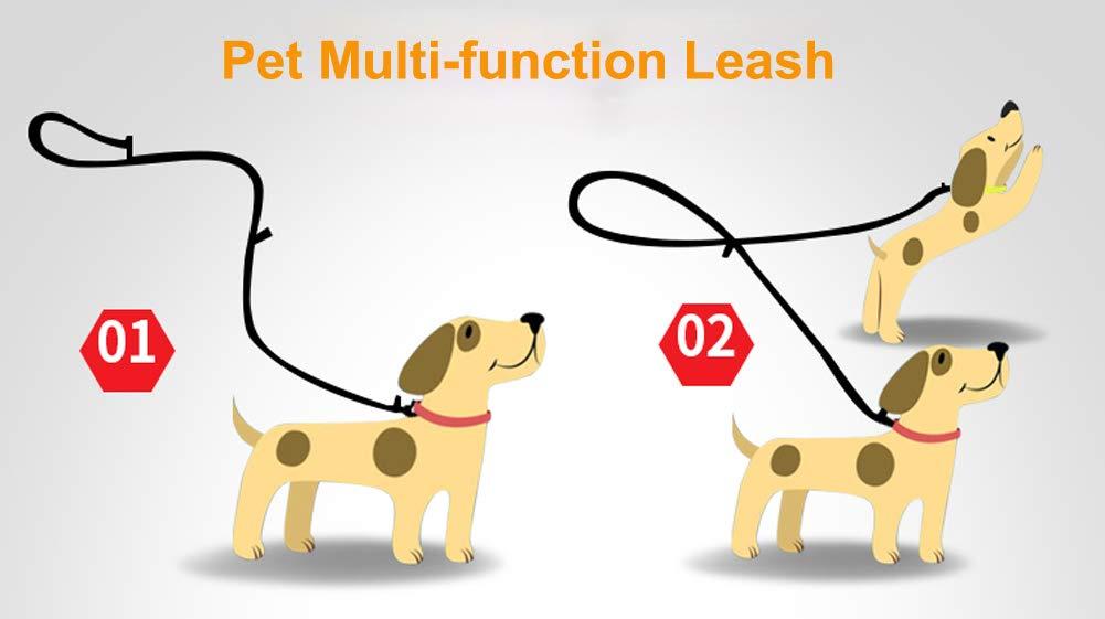 Tineer Pet Ajustable 2 Perros Manos Libres de Nylon Multifuncional Correa de Plomo Reflexiva para Perros de Entrenamiento para Caminar Correas para Perros M, Rosa
