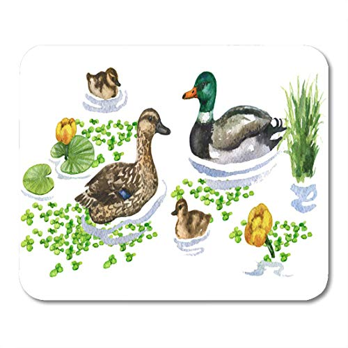 Emvency Mouse Pads Raster Watercolor Cute of Duck Family on Water Augmented Mouse Pad for notebooks, Desktop Computers mats 9.5