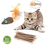 YOOPET Cat Catnip Sticks Natural Matatabi Silvervine Sticks - Cleaning Teeth Molar Tools Kitten Cat Chew Toy – with Free Gift Natural Catnip Mouse Cat Toy (40 PCS)