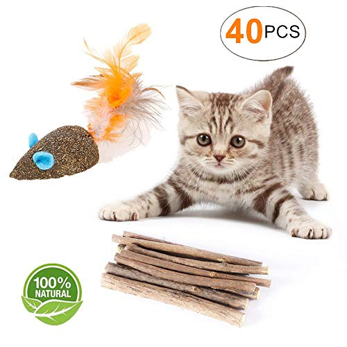 YOOPET Cat Catnip Sticks Natural Matatabi Silvervine Sticks - Cleaning Teeth Molar Tools Kitten Cat Chew Toy – with Free Gift Natural Catnip Mouse Cat Toy (40 PCS) by YOOPET