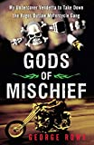 img - for Gods of Mischief: My Undercover Vendetta to Take Down the Vagos Outlaw Motorcycle Gang book / textbook / text book