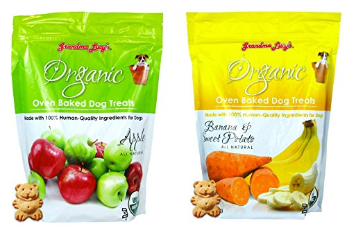 Grandma Lucy's Organic Baked Treat for Dogs Apple & Banana Flavors 2 Pack Review
