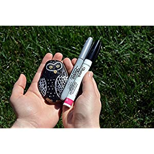Sharpie Oil-Based Paint Marker, Extra Fine Point, Black, 1 Count - Great for Rock Painting