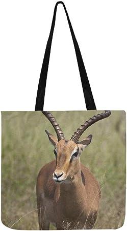 amazon sac impala