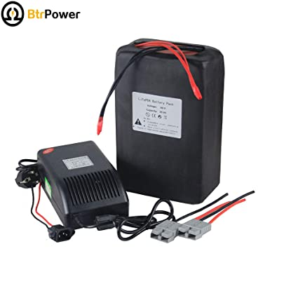 48 V 20 AH LiFePO4 Batería de litio + BMS 3 un cargador para ...