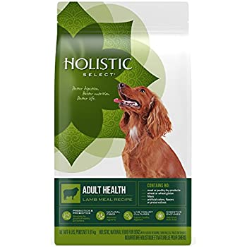 Holistic Select Natural Dry Dog Food, Lamb Meal Recipe, 4-Pound Bag