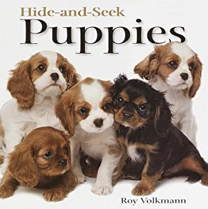 Hide-and-Seek Puppies (Hide-And-Seek Book) Roy Volkmann