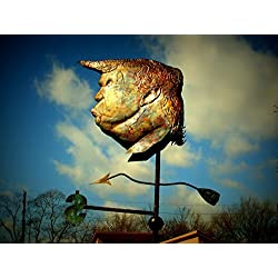 Donald Trump Weathervane