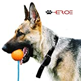 No Bark Collar Stops Barking Dogs Fast w/ Training Kit for Anti Bark Control GUARANTEED!