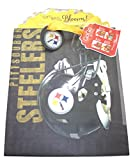 Turner Licensing Pittsburgh Steelers Large GoGo Gift Bag (8931022)