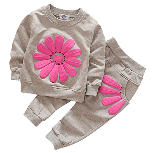 Toddler Baby Girls Sunflower Clothes Set Long Sleeve Top and Pants 2pcs Outfits Fall Clothes (Grey,Age 2T)