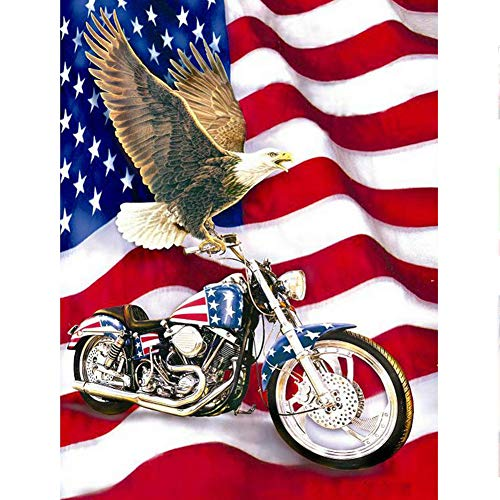 UPMALL DIY 5D Diamond Painting by Number Kits, Full Drill Crystal Rhinestone Embroidery Pictures Arts Craft for Home Wall Decoration American Flag Eagle 11.8×15.7Inches ()