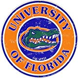 GameDay Novelties Florida Gators 12 x 6 Team Color Welcome to Our Home Wood Sign