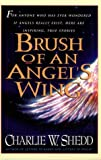 img - for Brush of Angels Wing book / textbook / text book
