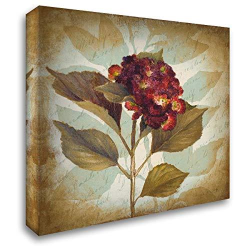 Aubergine Hydrangea Portrait 28x28 Gallery Wrapped Stretched Canvas Art by Loreth, Lanie