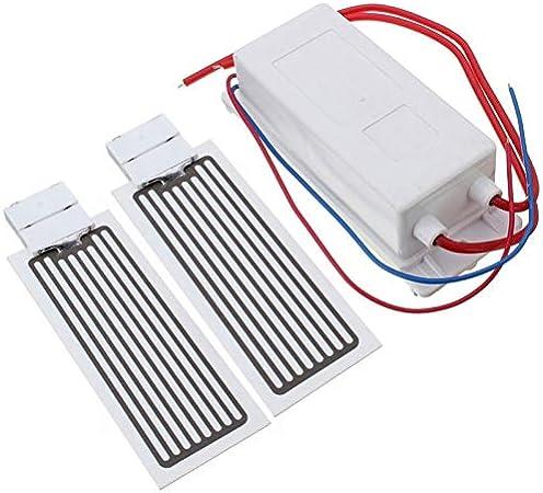 tragbarer Ozon-Generator-keramischer Platten-Ozonisator-Luft-Sterilisator des Auto-12v 10g//h Auto-Ozon-Maschine