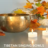 Tibetan Singing Bowls Meditation Music with Rainstrom Nature Sounds and Chants Om Singing
