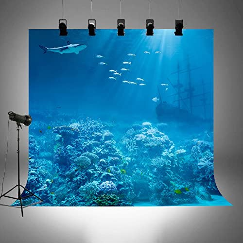 Unterwasserwelt Fotohintergründe Für Sommerpartys Bilder Tauchurlaub Themen Fotografie Hintergrund Untersee Photobooth Tapete Ft3916