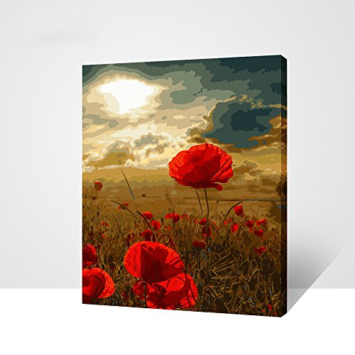 - [WOODEN FRAME] Diy Oil Painting Paint by Number Kit for Adult Kids - some Rerd Flowers 16x20 Inch